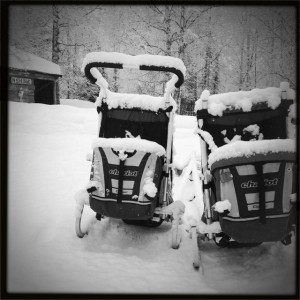 Baby chariots covered in snow!